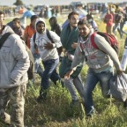 Study Finds Migrant Voices